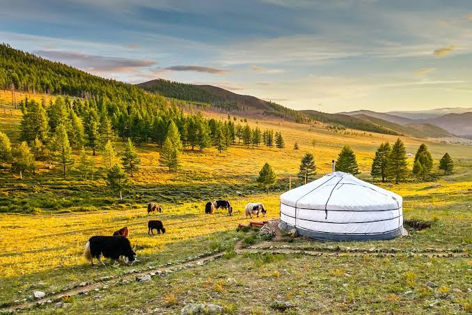 mongolia-tour-package